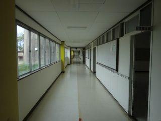 東日本大震災活動 泥だし、清掃作業